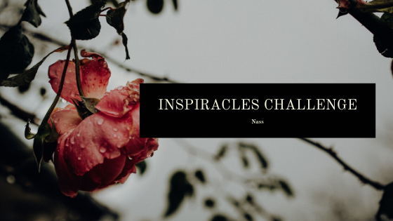 Inspiracles Challenge – November 2019 – Nassgemacht!