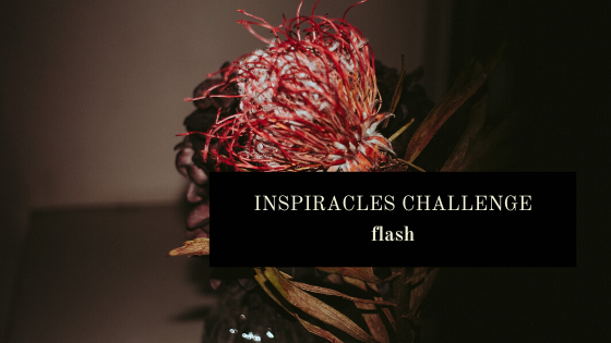 Inspiracles Challenge – Februar 2020 – Flash!