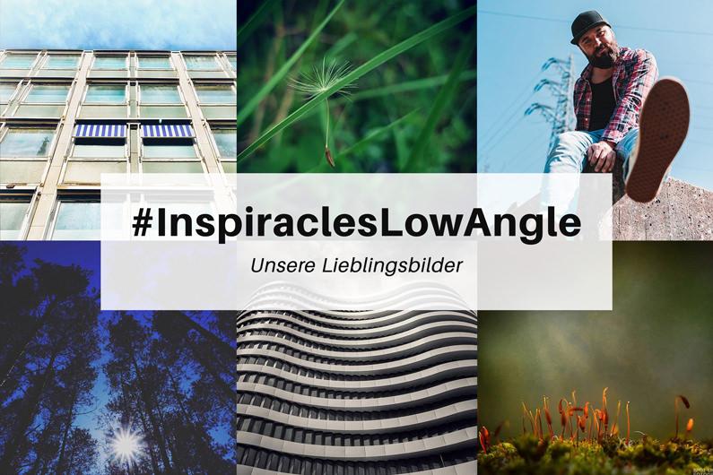 """Unsere Lieblingsbilder der Mai-Challenge """"Froschperspektive"""" – #InspiraclesLowAngle"""