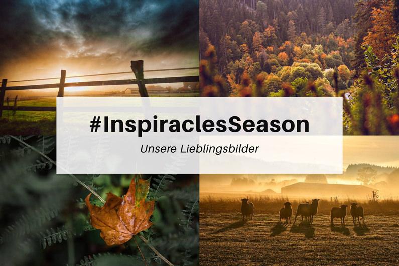 """Unsere Lieblingsbilder der Oktober-Challenge """"Season"""" – #InspiraclesSeason"""
