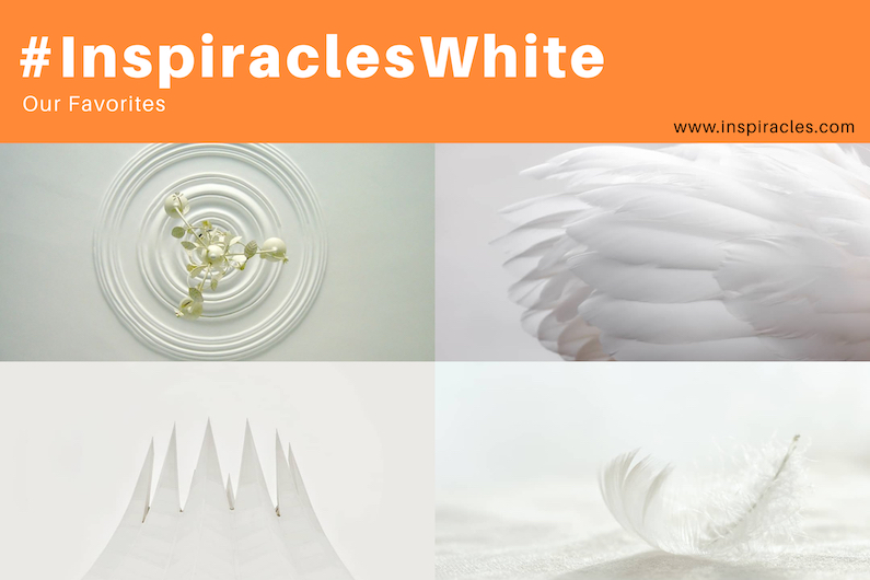 """Our favorite pictures of the April challenge """"White"""" – #InspiraclesWhite"""