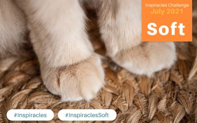Inspiracles Challenge – July 2021 – Soft