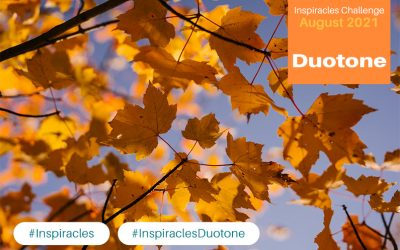 Inspiracles Challenge – August 2021 – Duotone