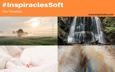 """Our favorite pictures of the July challenge """"Soft"""" – #InspiraclesSoft"""