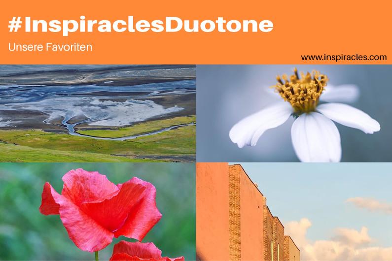 "Unsere Lieblingsbilder der August-Challenge ""Duotone"" – #InspiraclesDuotone"
